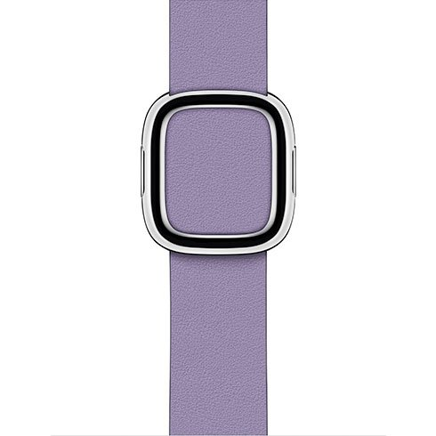 Apple Watch 40mm Lilac Modern Buckle - Large