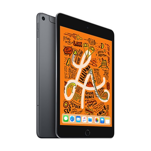 iPad mini Wi-Fi + Cellular 256GB Vesmírně šedý